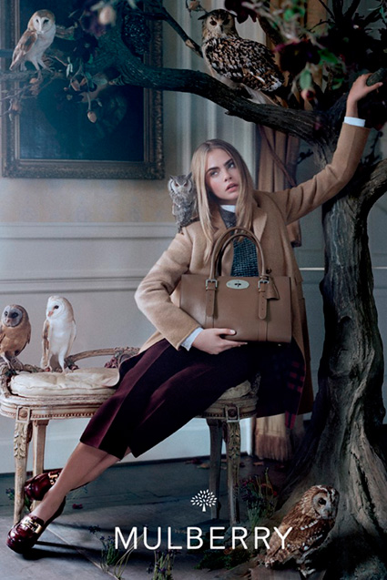mulberry-fall 2013